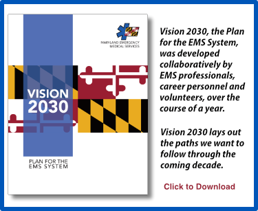Banner for Vision 2030 - Plan for the EMS System